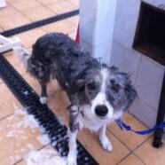 Bath time for Jem